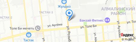 Сетевик на карте Алматы