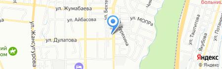Беркут на карте Алматы