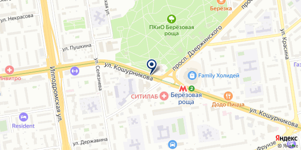 Фотобум на карте Новосибирске
