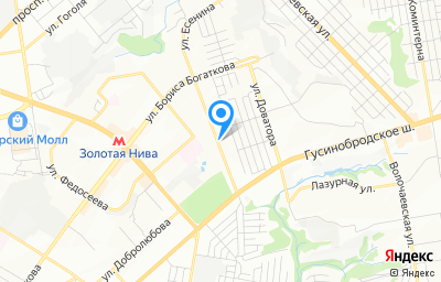 Местоположение на карте пункта техосмотра по адресу г Новосибирск, ул Есенина, д 55