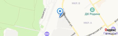 Сюрприз на карте Бердска