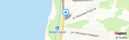 Дельфин на карте Новосибирска