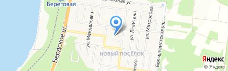 ДомОнЛайн на карте Бердска