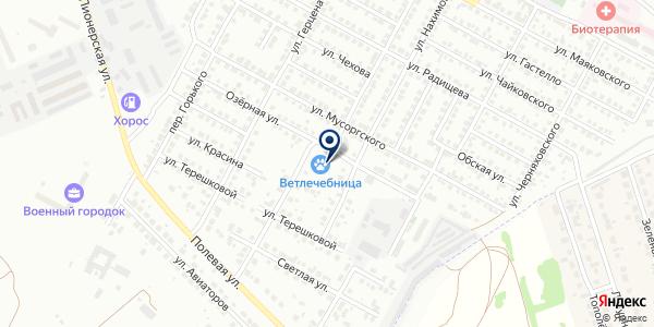 Управление ветеринарии Искитимского района Новосибирской области на карте Бердске
