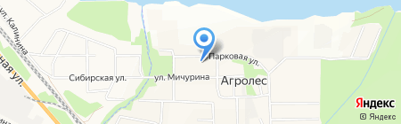 Администрация Мичуринского сельсовета Искитимского района на карте Агролеса
