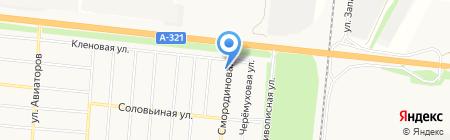 Беркут на карте Барнаула