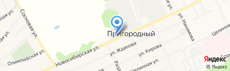 Русский лес на карте Барнаула