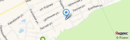 ДиректБюджет на карте Барнаула