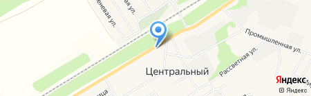 Домострой на карте Барнаула