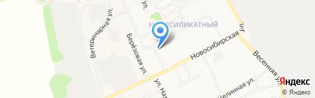 Тигрёнок на карте Барнаула