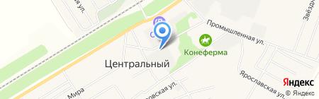 СибРиал на карте Барнаула