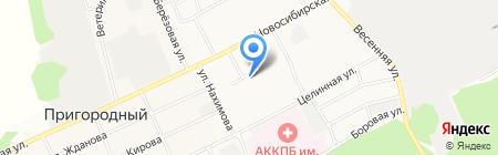 Делия на карте Барнаула