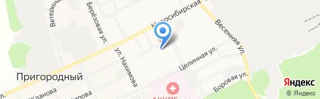 Юный инспектор дорожного движения на карте Барнаула