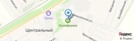 Конеферма на карте Барнаула
