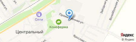 Цебар на карте Барнаула