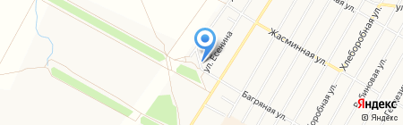 А-Вет на карте Барнаула