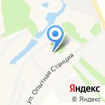 Алтай-дерево на карте Барнаула
