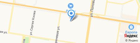 Адонис на карте Барнаула
