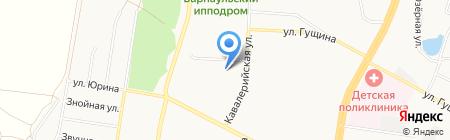 Дублин на карте Барнаула