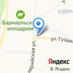 Скарабей на карте Барнаула