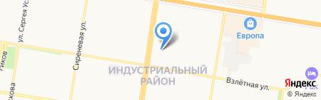 Золотой лев на карте Барнаула