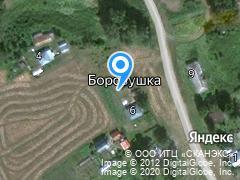 Новосибирская область, город Тогучин, Тогучинский район, ул. п. Боровушка, СНТ Березка