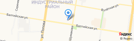 7 роз на карте Барнаула