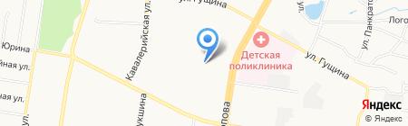ТИС на карте Барнаула