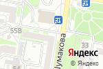 Схема проезда до компании Fiffa в Барнауле