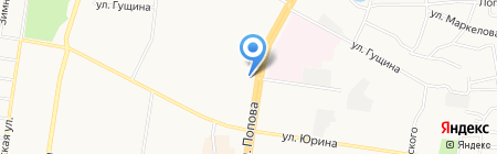 Три поросенка на карте Барнаула