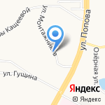 Алпис на карте Барнаула