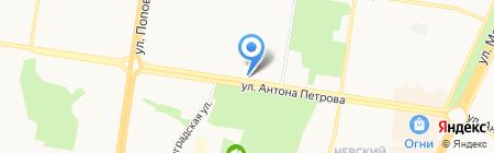 Гвоздика на карте Барнаула