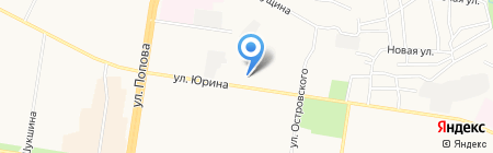 День Аиста на карте Барнаула