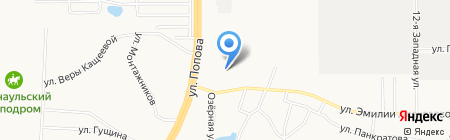 Шиномонтажная мастерская на ул. Попова на карте Барнаула