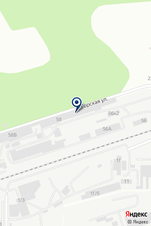 Лесная мода на карте Барнаула