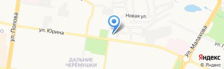 Весёлочки на карте Барнаула