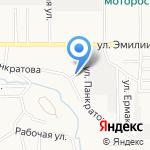 Древо жизни на карте Барнаула