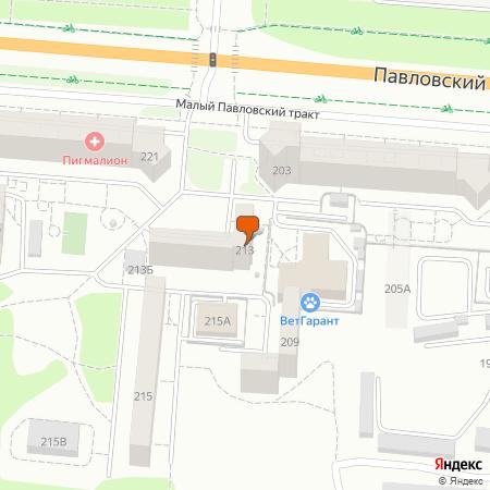 Павловский тракт ул., 213
