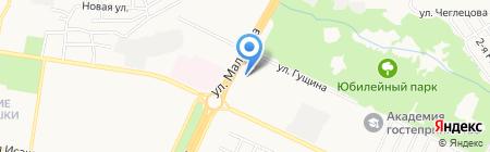 Сократика на карте Барнаула