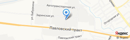 Зелёная обезьяна на карте Барнаула