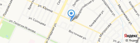 Чайка на карте Барнаула