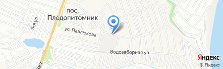 Цветы Алтая на карте Барнаула