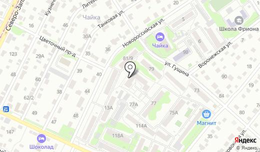 Профессионал. Схема проезда в Барнауле