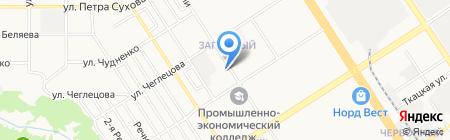 Чёрная Каракатица на карте Барнаула