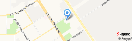 Кит на карте Барнаула