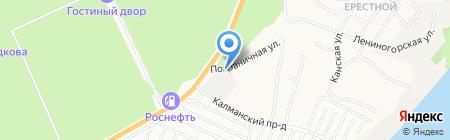 Медведь на карте Барнаула