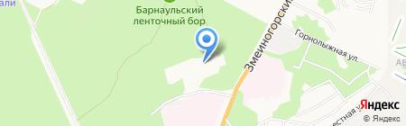 Алтайский бочонок на карте Барнаула