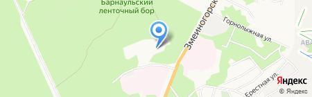 АЛТАЙ-РАБИЦА на карте Барнаула
