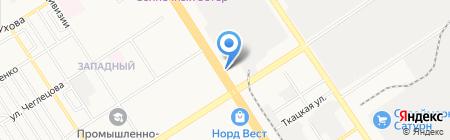 Армрестлинг на карте Барнаула