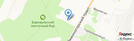 Краб на карте Барнаула